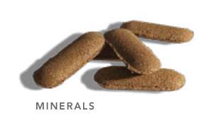 Briquetting Application Minerals